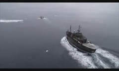 Sea Shepherd confronts Japanese illegal whaler...