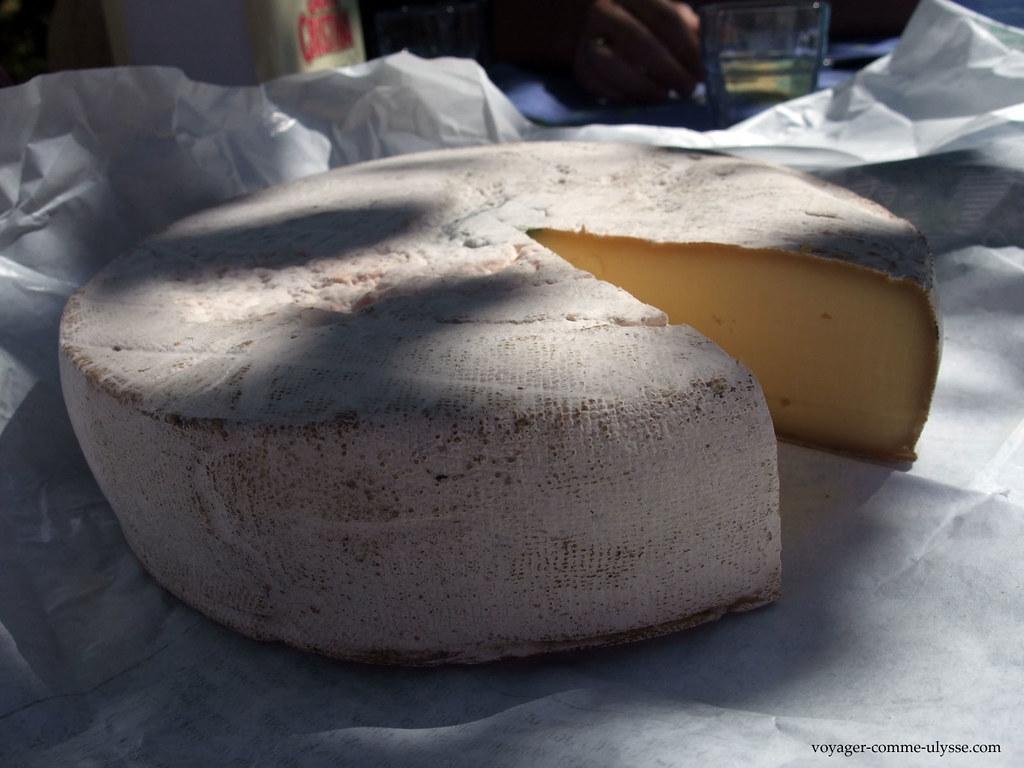 Fromage de Saint Nectaire fermier
