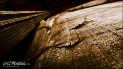 Wooden Landscape (profiphotos) Tags: landscape wooden antique website aged lightroom noisereduction presets