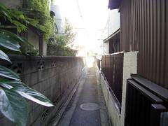 階段の先は路地 - 奥戸街道 -