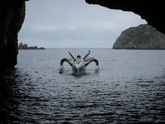 Earthrace from inside Rikoriko (flickandtom) Tags: ocean newzealand water silhouette northisland cave seacave earthrace rikoriko poorknightsmarinereserve perfectdayoceancruise