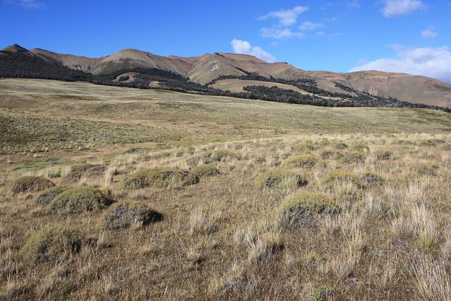 Cerro Cazador