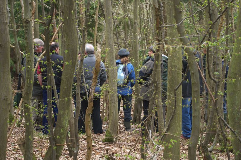 Small woodland owners discuss plants