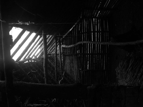 Vanuatu : Ile de Tanna #29 : case