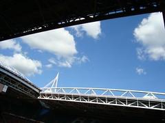 Cardiff blue