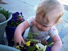 Gardening 1 (Ludeman99) Tags: eowynlouisebitner