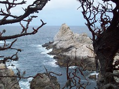 Pinacle Cove (tmrae) Tags: coast monterey pacific pointlobos