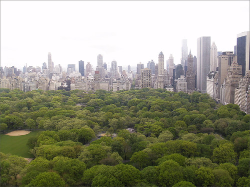 Central Park from Above, NYC