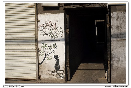 hutong-painting-cat-7150