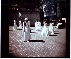 mute 5 (Pascal Rue14N14) Tags: iris summer sun dance holga xpro bxl
