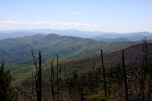 GSM National Park