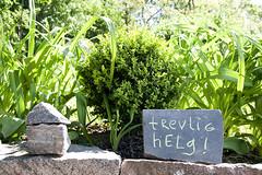 trevlig helg (infing) Tags: sten trdgrd