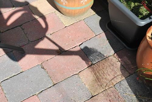 Schaduw van .. ?? Shadow of ....??