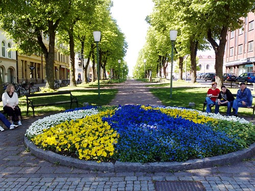Flower bed at spring in Mariestad, Sweden