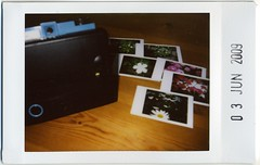 Diana Instant Back+ (miwas) Tags: diana instant fujifilm cheki fujiinstaxmini instaxmini instaxmini7s dianainstantback