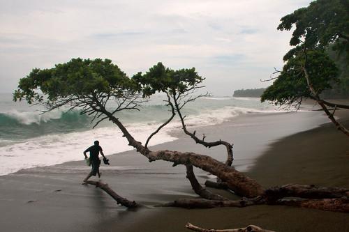 Parque Nacional Corcovado-129
