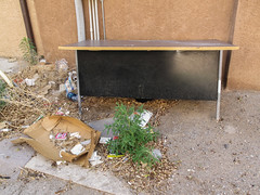 Downtown Alamogordo trash area of backalley. (Tim Kiser) Tags: newmexico wall trash garbage sand weeds alley downtown backalley desk pipes may litter plastic cardboard adobe alamogordo 2009 gravel fauxdobe officedesk abandonedfurniture southernnewmexico alamogordonewmexico oterocounty plasticpipes fauxadobe discardedfurniture img6807 abandoneddesk 20090526 fakeadobe may2009 blackdesk oterocountynewmexico southcentralnewmexico downtownalamogordo discardeddesk
