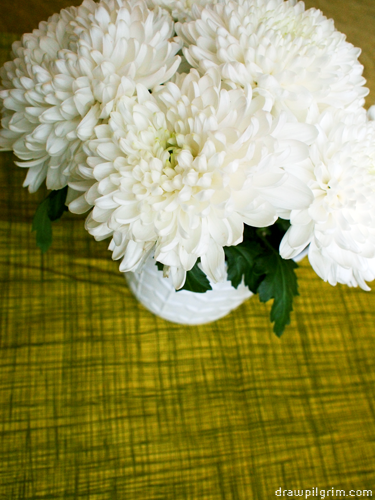 7by7: chrysanthemum