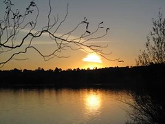 Sunset over Wallerawang (Wendy Hawkes) Tags: sunset australia nsw twigs lithgow wallerawang lakewallace