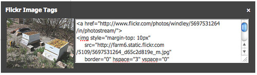 The box giving me the Flickr image tags for a paticular picture.
