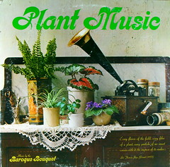 Plant Music (kevin dooley) Tags: music plant flower art garden fun funny humorous 33 good album great humor kitsch collection cover lp record tacky corny rpm