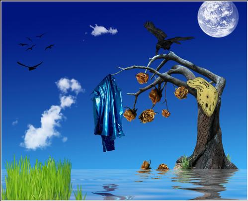 Song Lyrics : Famous Blue Raincoat (Leonard Cohen) - Risa