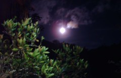 Srie Luas - Moons (jemaambiental) Tags: night corte crop lua noite moom inthemountain tagssrieluasmoons namontanha