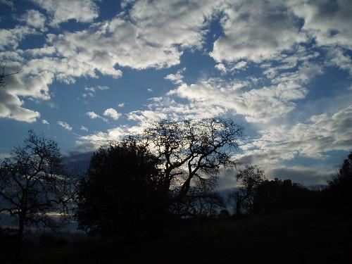 Edgewood Sky 02