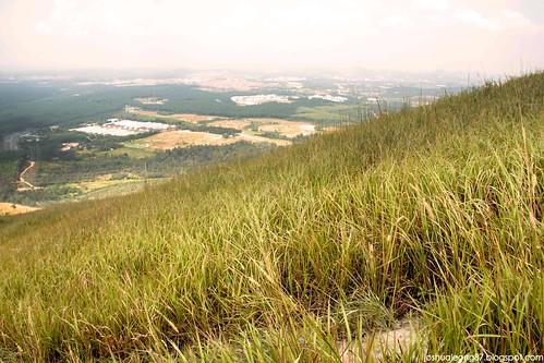 Broga hill 11