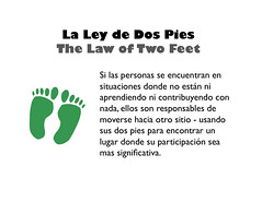 la ley de dos pies (law of two feet)