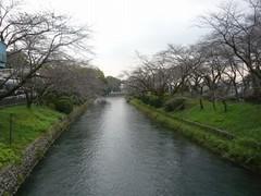 多摩川 at 羽村市01