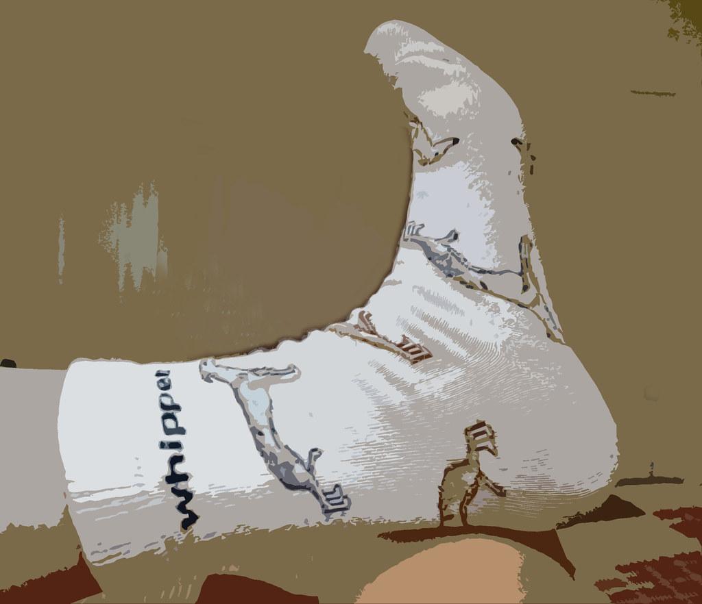 69/365 - Whippet socks