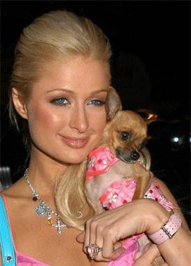 Paris Hilton and Tinkerbell photo