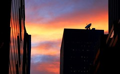 DSC02379adj3  Midtown Sunset (ftoomschb) Tags: nyc newyorkcity sunset sky ny reflection building colors silhouette dish dusk manhattan satellite sony midtown alpha dslr tamron 90mm f28 gloaming a700