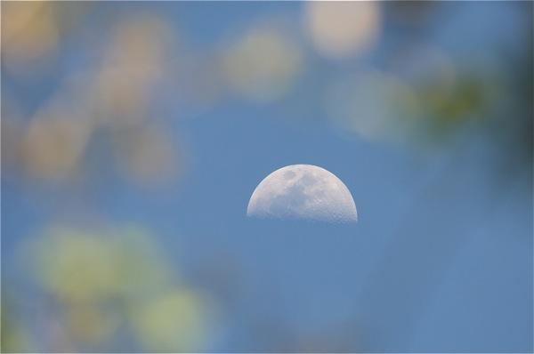 moon_0062