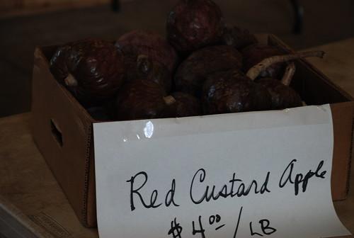 red custard apple $4.00 / LB