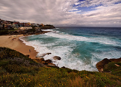 ~ Beautiful Scene At Tamarama Beach ~ (Peem (pattpoom)) Tags: flowers seascape beach landscape nikon searchthebest sydney australia tamarama flickrsbest d700 holidaysvacanzeurlaub saariysqualitypictures nikkorafs1424mmf28ged
