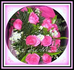 Feliz día mamá ¡¡¡ (IDIAY) Tags: roses love mamá mother rosa fucsia madre frienship dearfriend