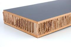 X-Board Plus Panel #5