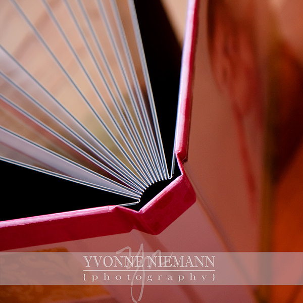 Introducing the Storybook! | St. Louis Professional Photographer% category