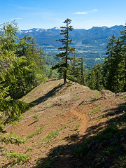 Scramble trail