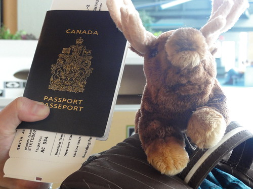the moose & the passport...