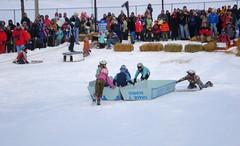 Six Bad Eggs (Kristina_5) Tags: winter snow race michigan cardboard eggs sled 2009 eggcarton winterfest grandhaven badeggs
