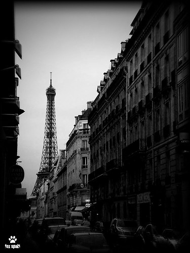 Caminando por Paris.. / Walking for Paris..