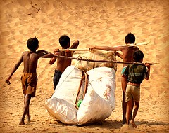 Sharing Burden (~sleepwalker) Tags: india indian andhrapradesh srikakulam donapadu beach sea shore coast boys fishing catch carry