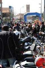 Trobada de Harleys Davinsons