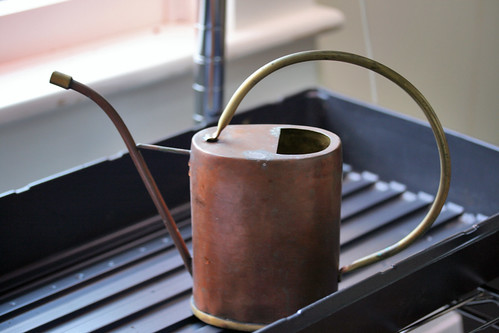 my favorite watering can