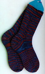 drachenblut socks