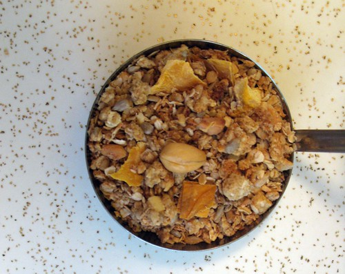 cashew mango granola