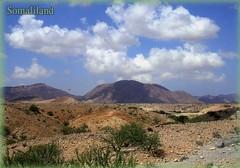 Port of Berbera (recadosdri) Tags: postcard somaliland